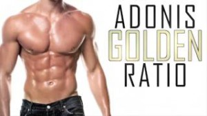 Adonis Golden Ratio for men