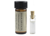 Helichrysum Essential Oil for Stretch Marks