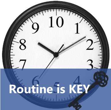 how to establish a routine after a baby